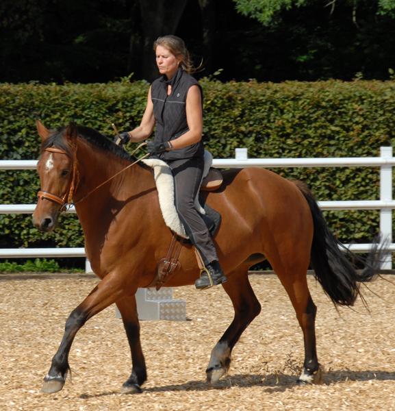CP_Carola-auf-Pferd